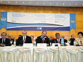 WHO Regional Committee for the Eastern Mediterranean, Sixty-first session
