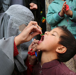 Female polio workers