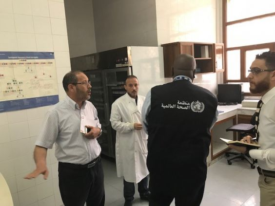 'So not one outbreak goes unnoticed': WHO supports influenza surveillance in Libya and Djibouti