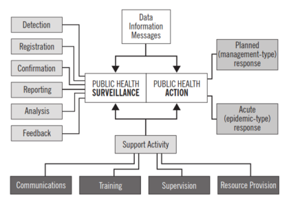 A diagram showing the principle framework for public health surveillance