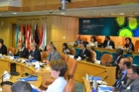High-level health officials attend the WHO consultation on the coronavirus meeting in June 2013