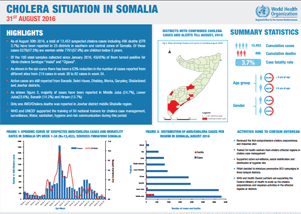 Cholera situation in Somalia, 31 August 2016