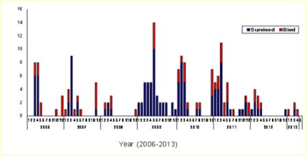 Update on avian influenza in Egypt, March–May 2013