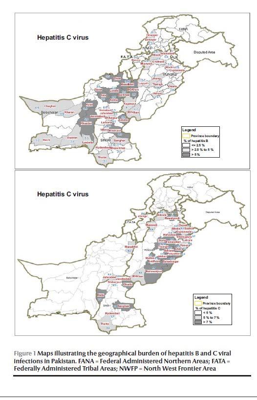 Image result for hepatitis pakistan