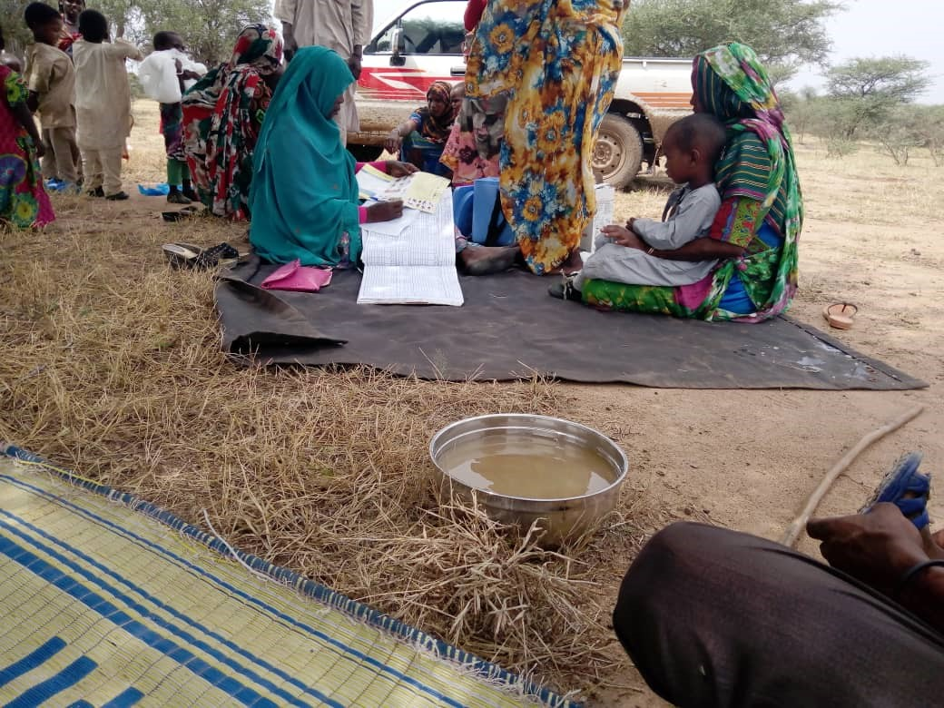 Mitigating the threat of poliovirus importation to Sudan