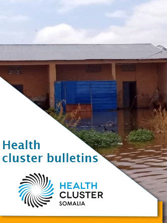 Health Cluster bulletins