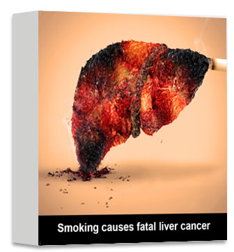 Smoking causes fatal liver cancer