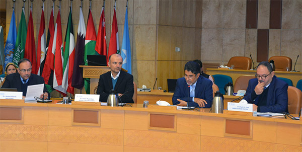High-level meeting on institutional capacity for the use of evidence in health policy-making